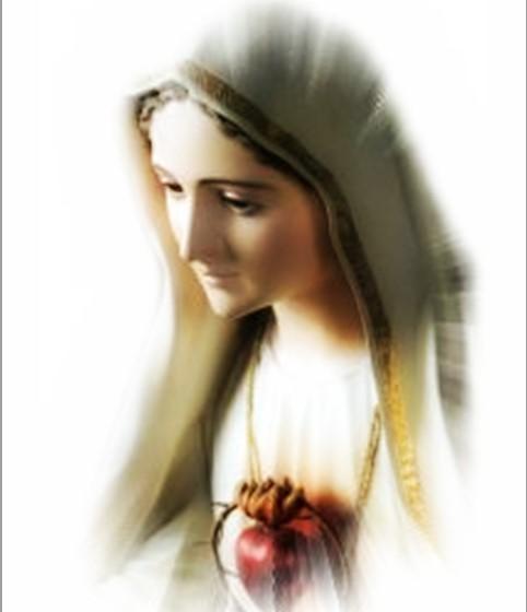 El papa Francisco visitará Fátima en Mayo.